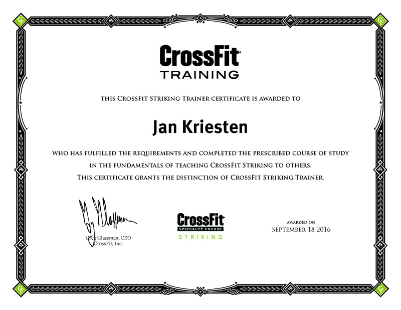 CrossFit Striking Trainer